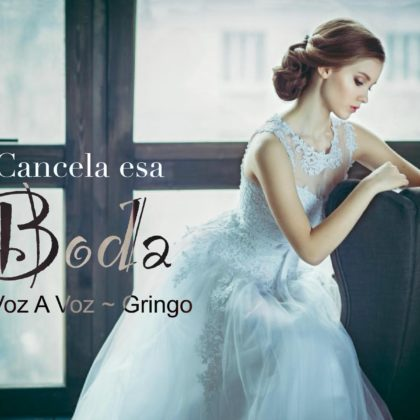 https://alosiblamusicstore.com/wp-content/uploads/2019/08/Cancela-Esa-Boda-El-Gringo-feat.-Gio-Voz-a-Voz.jpg